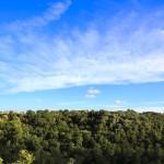 66. trulli del bosco jpg pic