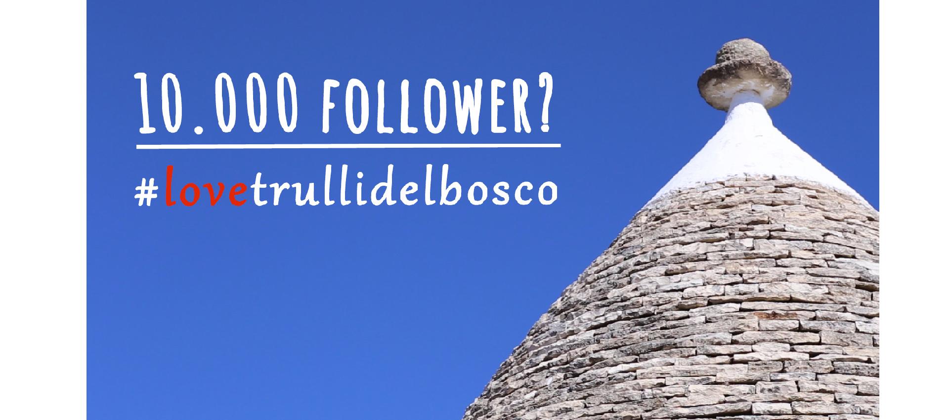 follower instagram free
